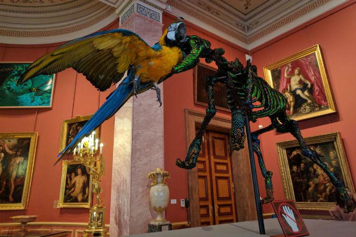 ВЭрмитаже открывается масштабная выставка Яна Фабра