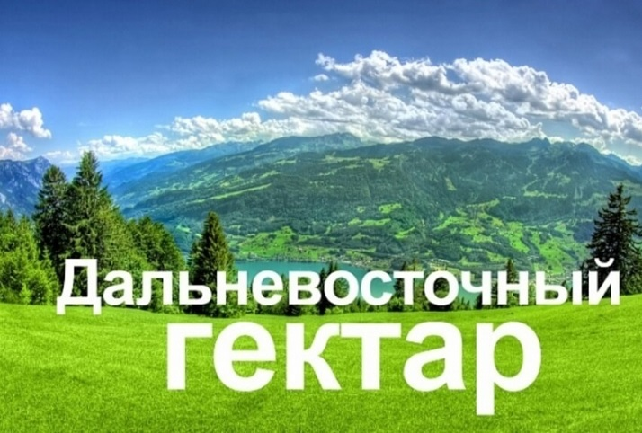 ВХабаровском крае подано неменее 600 заявок навыдачу «дальневосточного гектара»