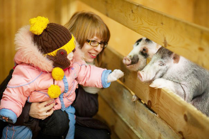Фото: архив Иркутского детского контактного зоопарка