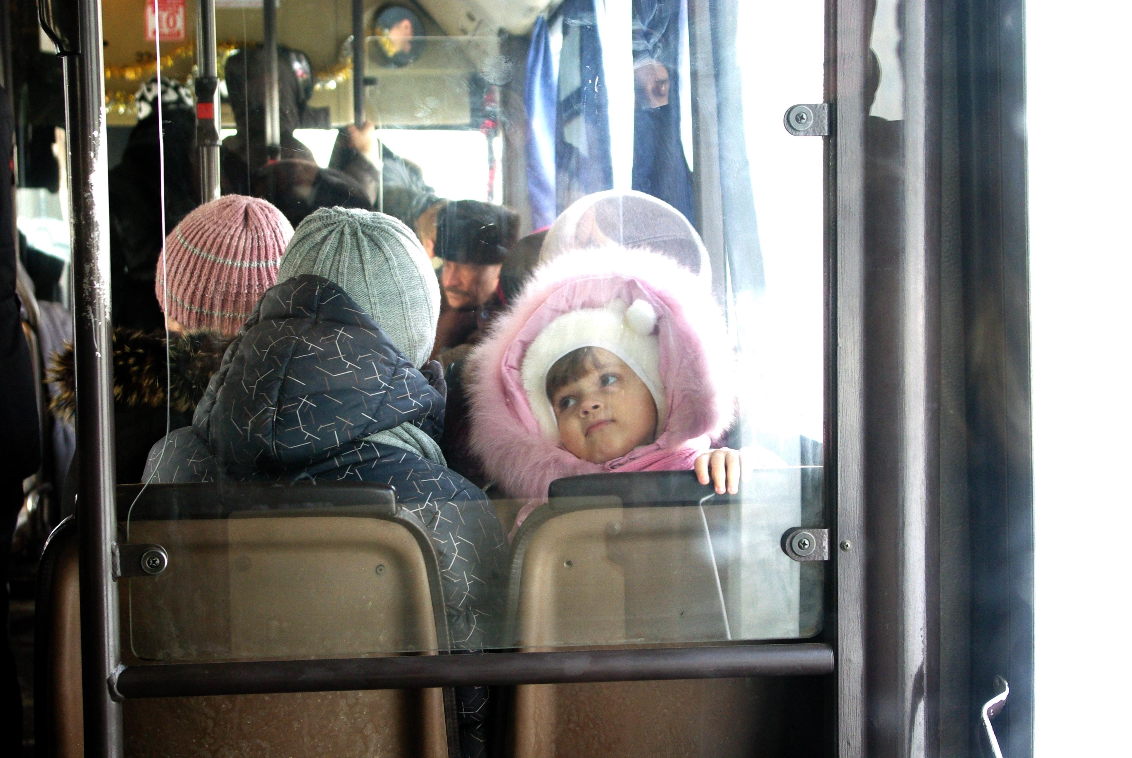 Школьники Волгограда зимой смогут ездить наобщественном транспорте бесплатно