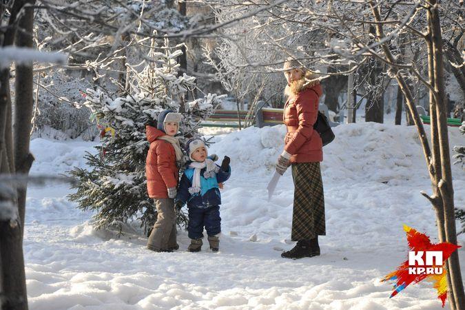 Солнце вернется в Новосибирск с похолоданием.