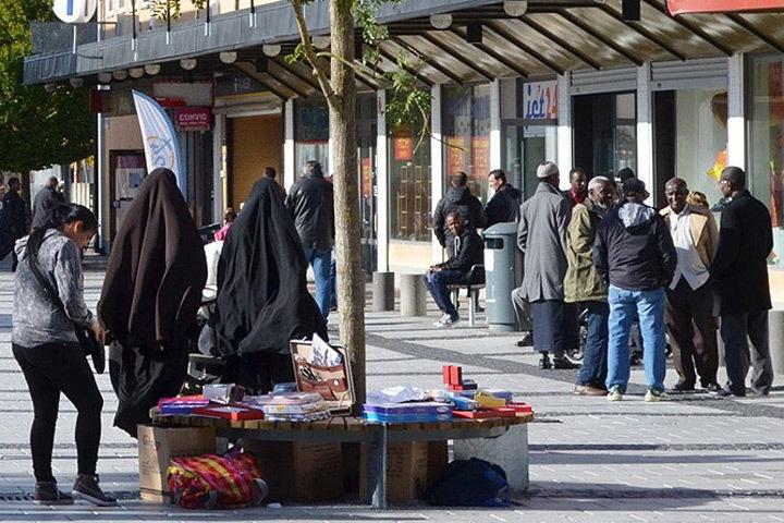 Правительство Дании составило «список гетто» - неблагополучных и маргинальных районов страны. Фото: с сайта e-news.su