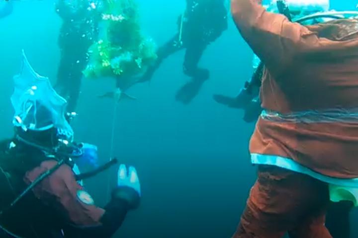 Дайверы изКузбасса встретили Новый год под водой