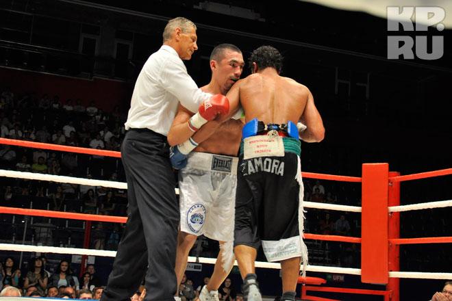 Вечер профессионального бокса в уфе - четверг, 03 сентября 2015 - концертная площадка стадион динамо - уфа