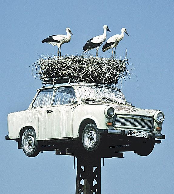 Отечественные авто утилизировать выгоднее. Фото: GLOBAL LOOK PRESS