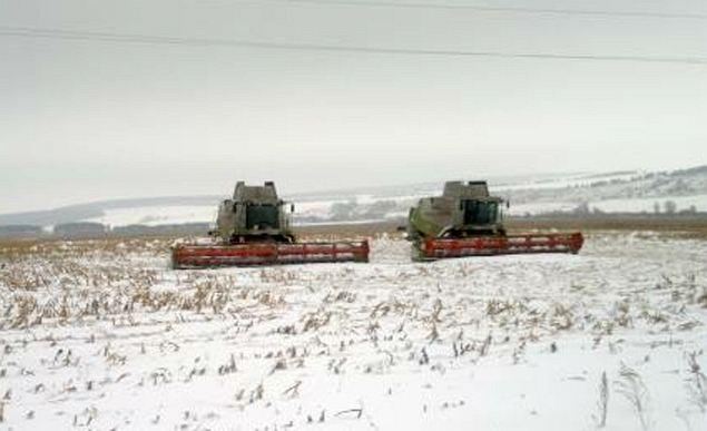Завидев контролеров из Росагролизинга, фермер выгнал в заснеженное поле комбайны: урожай убирать. Такая вот имитация деятельности.