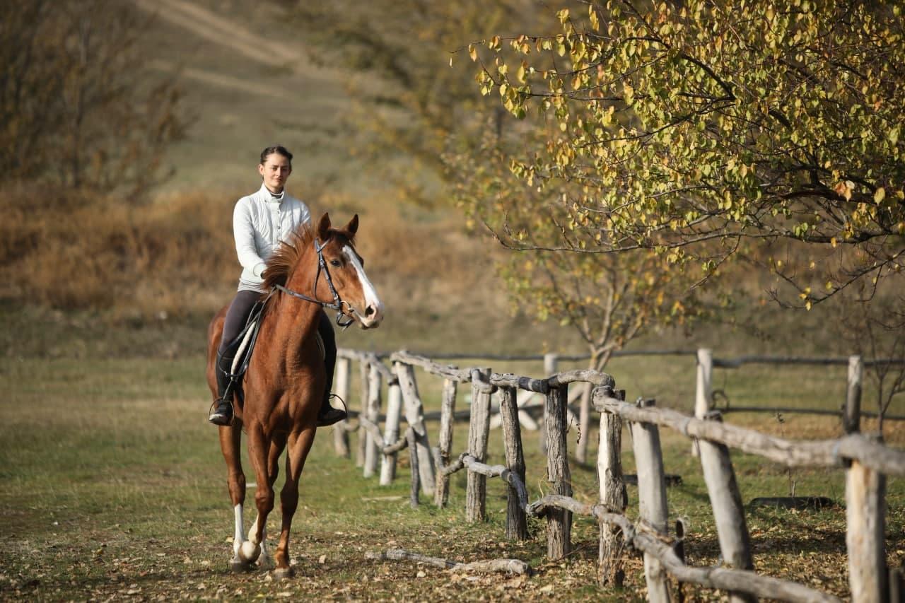 Где покататься на лошадях в Москве и Подмосковье