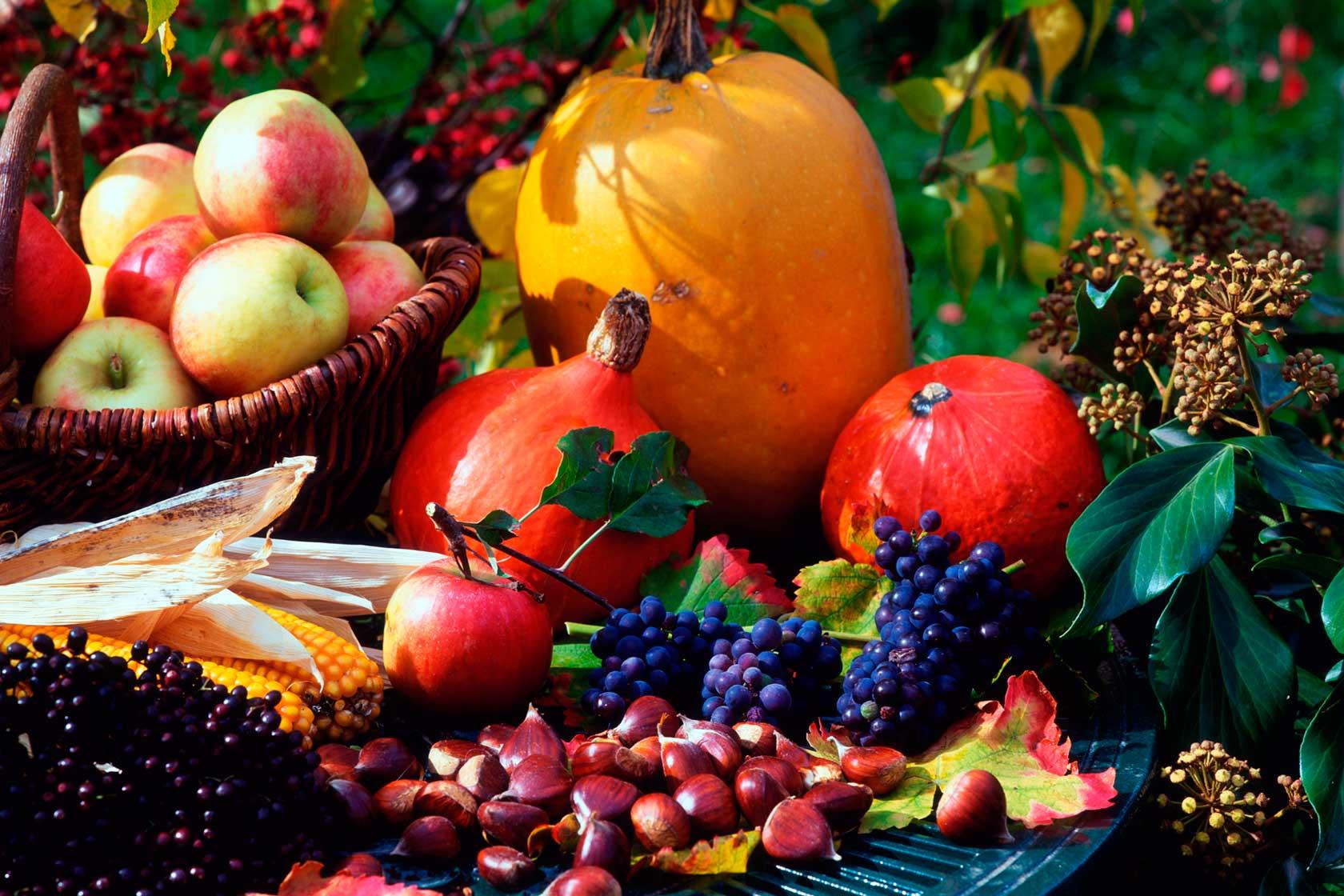 американская красивые картинки фрукты осень удача в например эти
