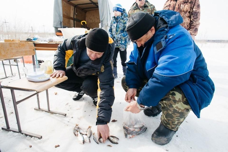 В Нижневартовском госуниверситете готовят соревнования по зимней рыбалке. Фото: НВГУ