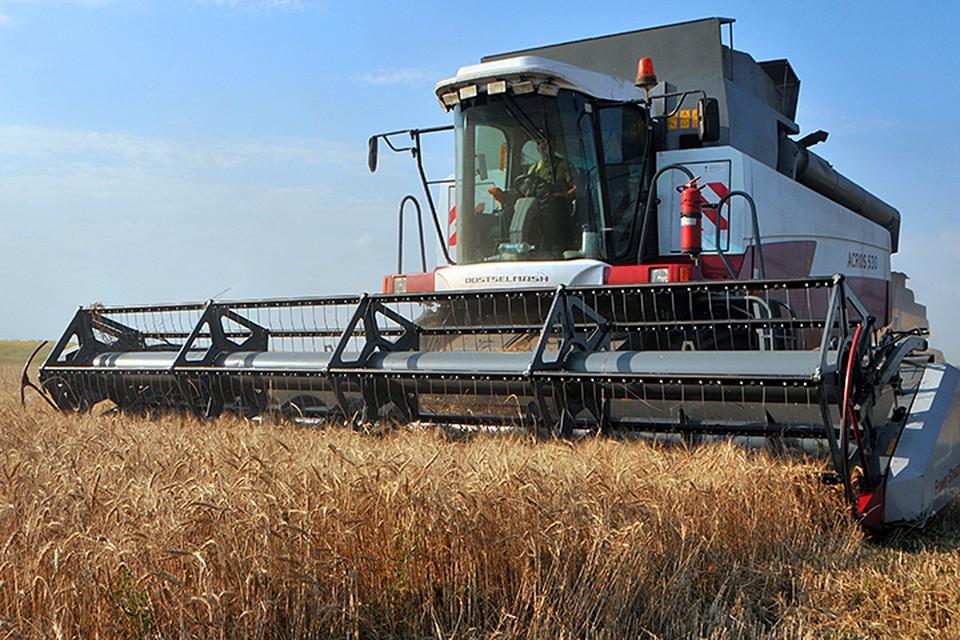 Недавно турецкие власти заявили о введении заградительных пошлин на российскую сельхозпродукцию. Речь о пшенице