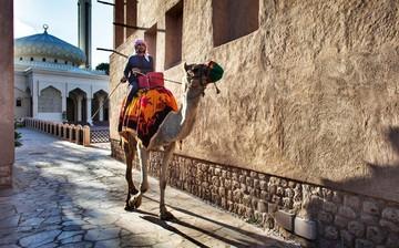 Пять бесплатных развлечений в Дубае