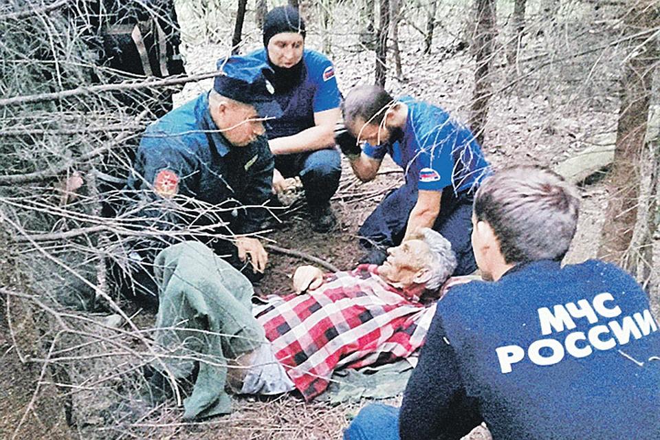 Людей, потерявшихся в подмосковных лесах, можно спасти, но закон мешает это делать. Фото: lizaalert.org