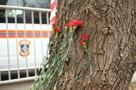 Мама школьника, погибшего при взрыве в Ижевске: «Мы надеялись, что он жив»