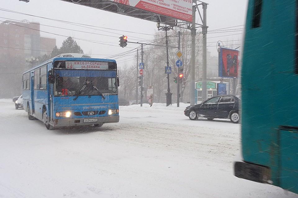 Операция безопасный автобус коваленко