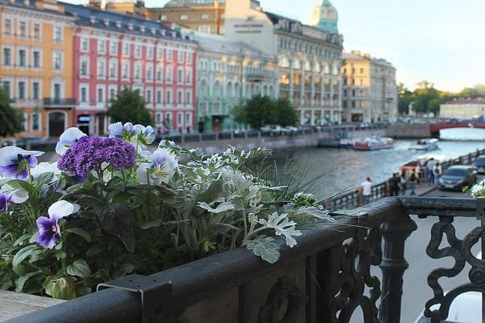 Петербургский хостел стал лучшим в России, Европе и мире