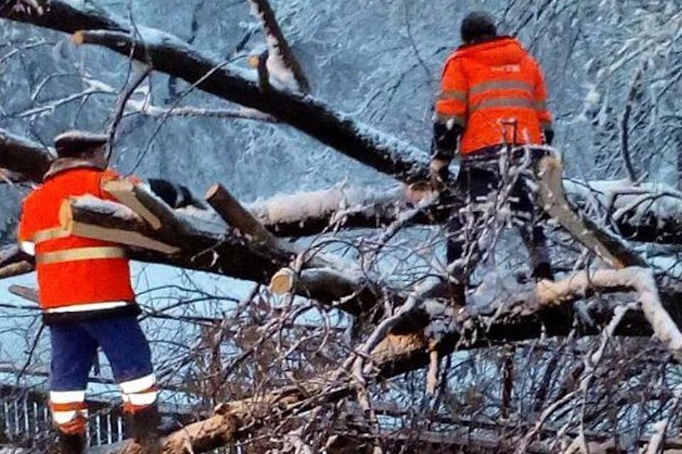 Собянин: число пострадавших от снегопада в Москве возросло до пяти