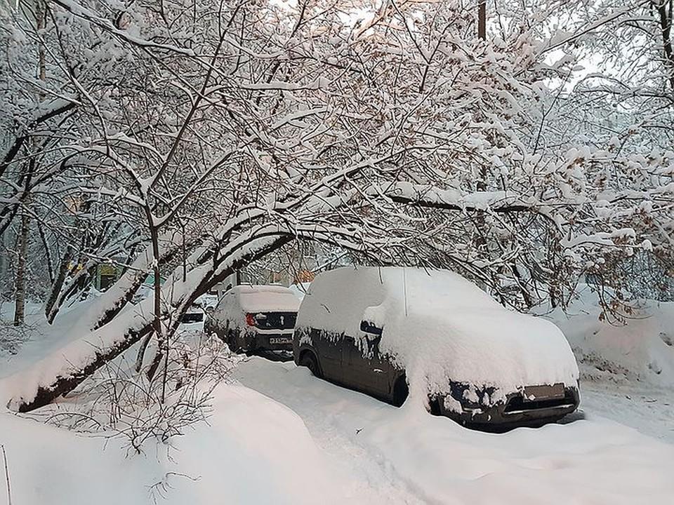 Центральную Россию заметает. А вам снегокалипсис больше вреда или радости принес?