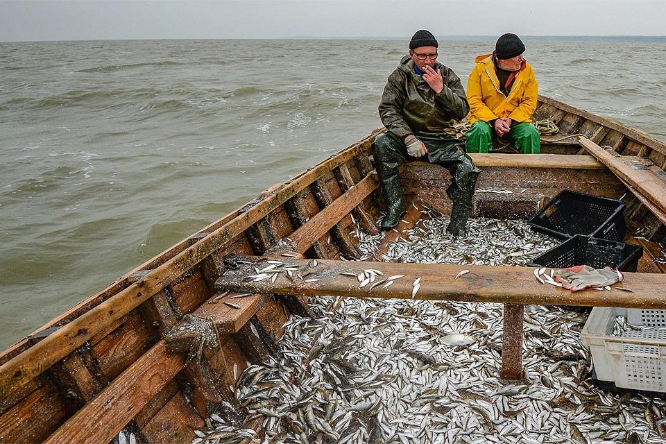 Российские рыбаки написали обращение президенту.