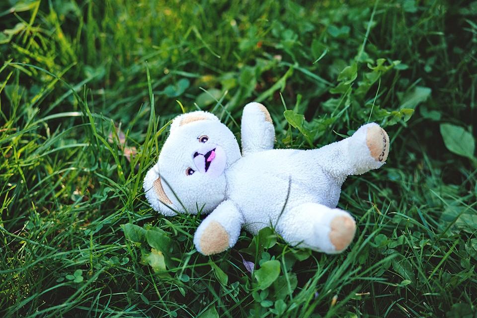 Следователям предстоит выяснить, от чего умерла 10-летняя девочка. ФОТО: pixaby.com