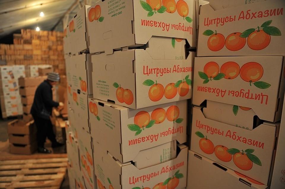 Фрукты и овощи из Абхазии скоро вернутся на наши прилавки