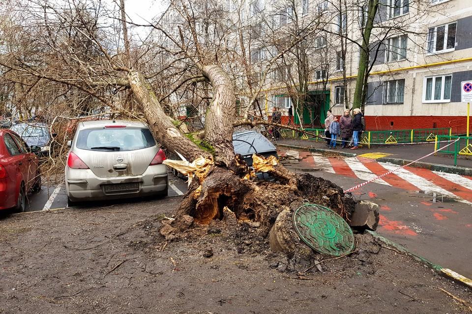 Наиболее разрушительные последствия ураган принес в столицу.