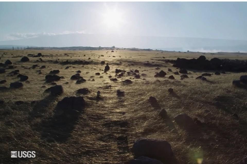 """""""Шерсть"""" покрыла Гавайи. Будто бы здесь полиняли тысячи гигантских собак."""