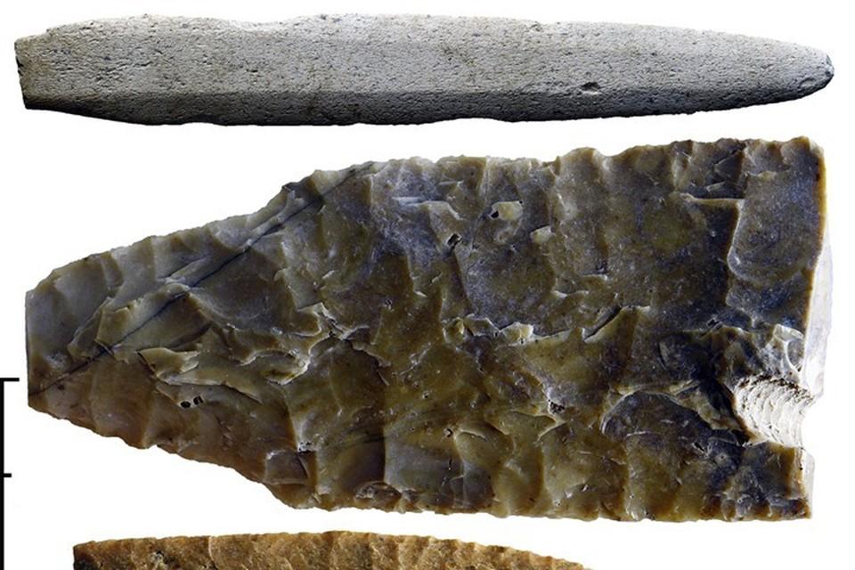 Верхний предмет - кинжал из привозного кремния. Это очень дорогой материал, который 4 тысячи лет назад добывали на территории современной Швеции. Фото: Евгений Колпаков