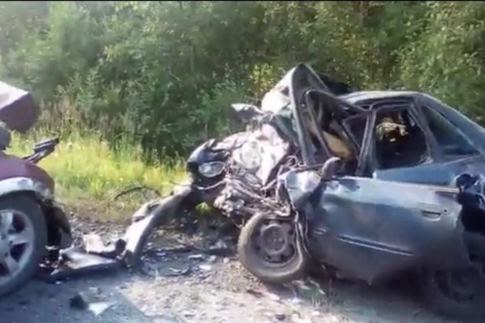 Фото: кадр видео vk.com