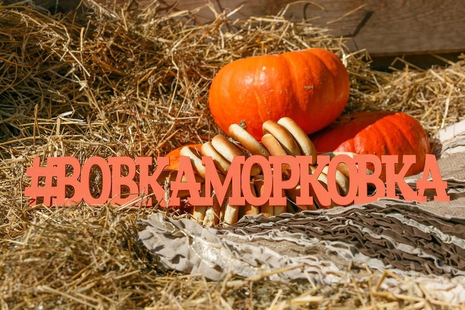 Фото: Вовка-Морковка
