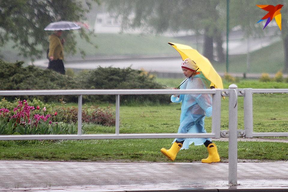 Последние летние деньки будут дождливыми