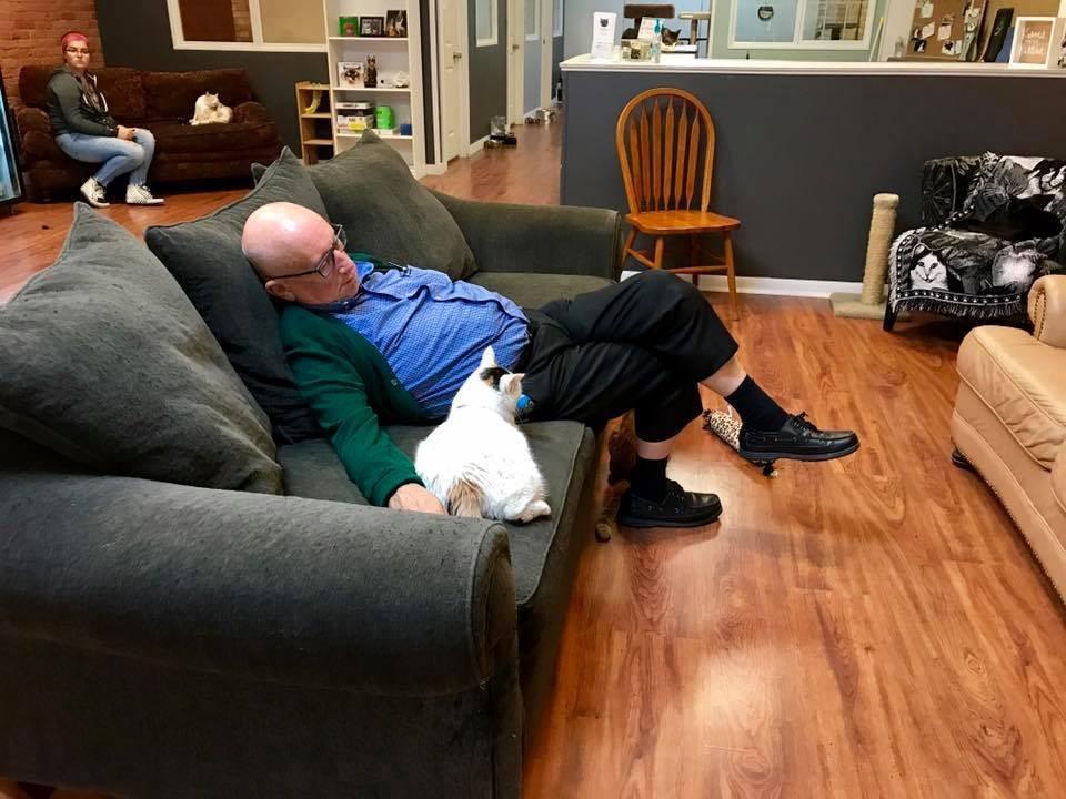 Терри Лаурмэн любит вздремнуть с кошками в приюте Safe Haven