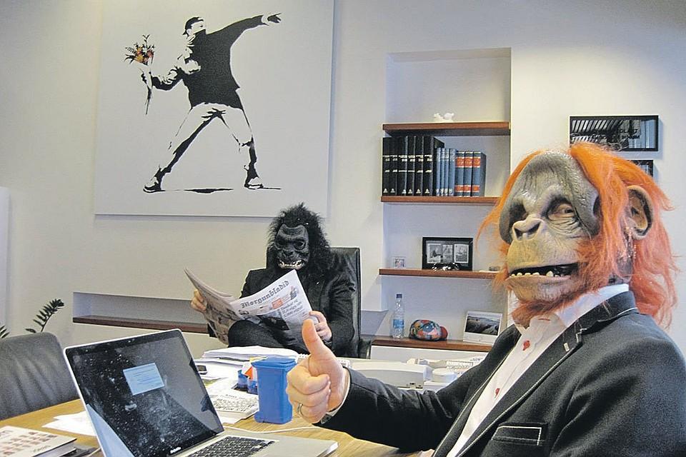 Быка, смешные картинки из офиса