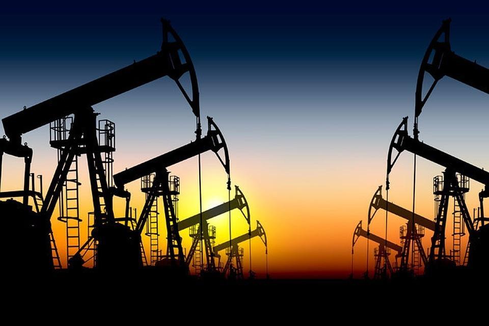 ОАЭ рассчитывает нарастить нефтедобычу до 5 млн баррелей в сутки к 2030 году