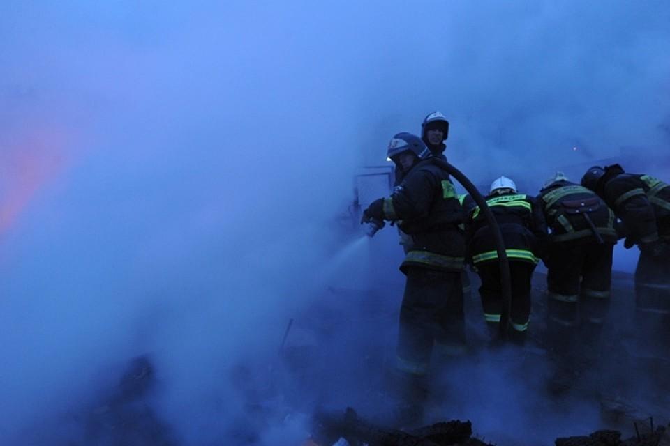 Огонь уничтожил все, что было нажито семьей