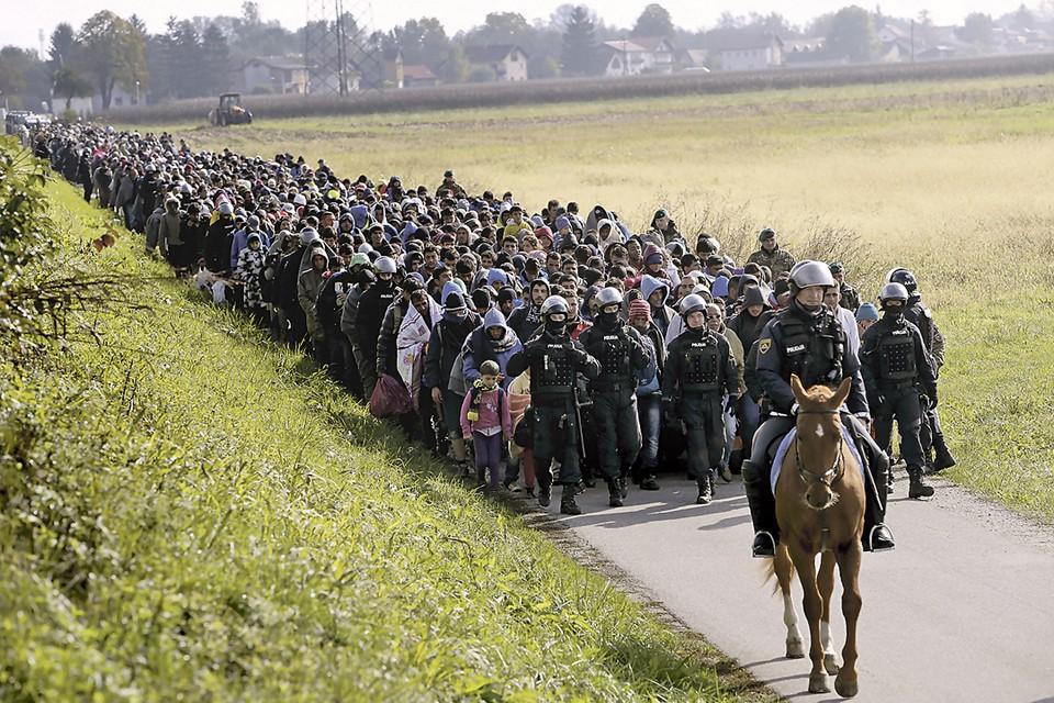 Октябрь 2015-го. Через месяц после громкого заявления Меркель в сторону Германии направились сотни тысяч людей. Так колонну с мигрантами сопровождали полицейские в Словении. Фото: Srdjan Zivulovic/REUTERS