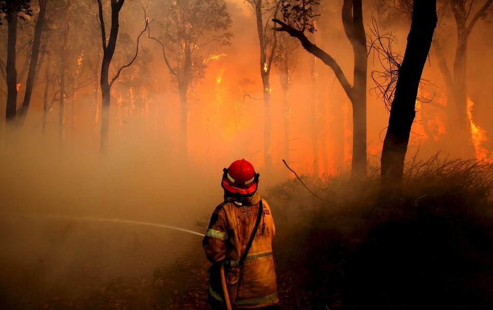 В австралийском Квинсленде приступили к эвакуации из-за лесных пожаров.