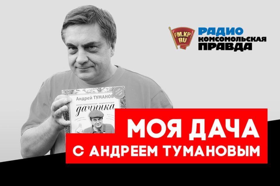 Главный дачник страны Андрей Туманов