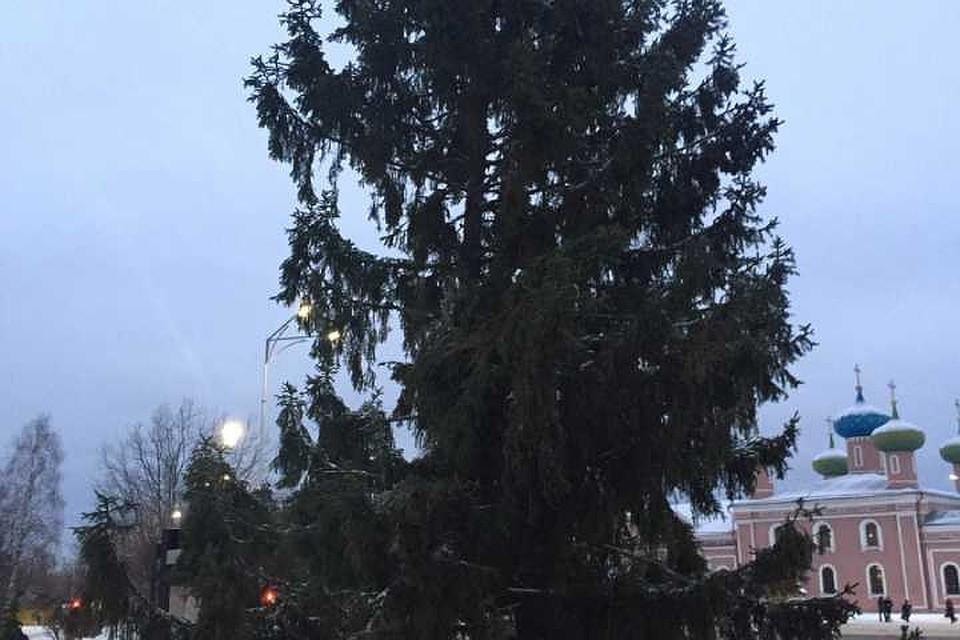 """Такая елка жителей Тихвина не порадовала. Фото: """"Подслушано Тихвин"""""""