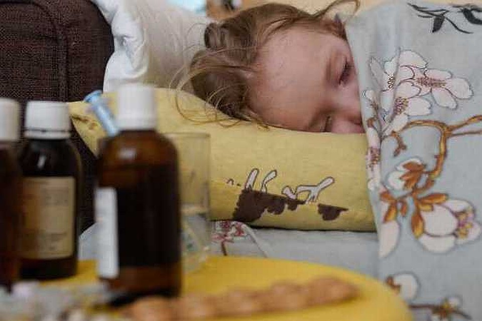 10a2b0c24c29 Свиной грипп на Кубани 2019  С болезнью слегли больше 130 человек
