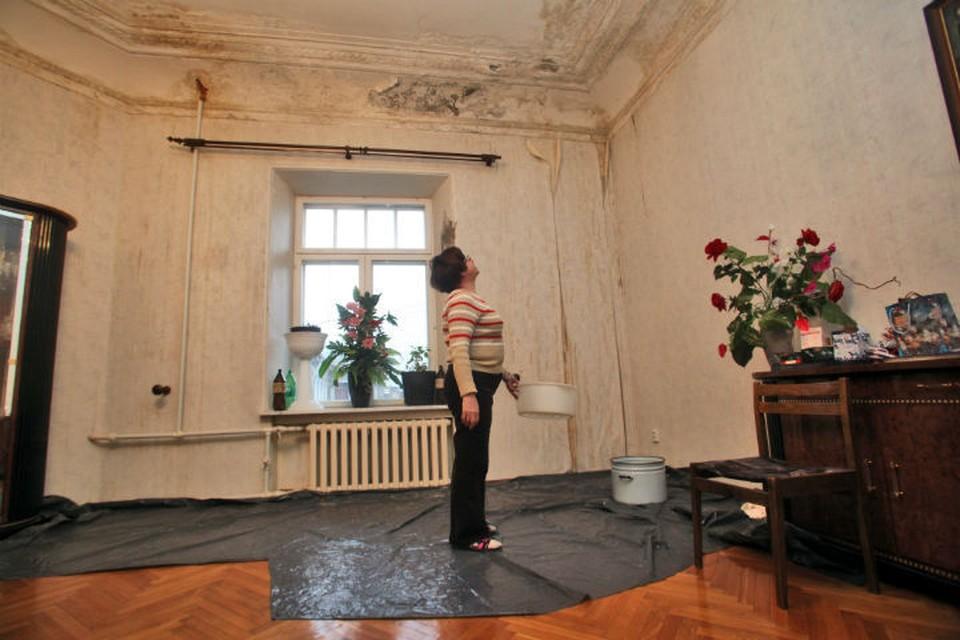 Читайте, куда звонить в Петербурге, если у вас течет кровля ФОТО: Елена ПАЛЬМ/Интерпресс