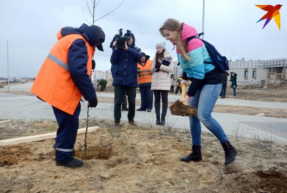 Наша журналистка посадила две березки! Фото: Александр КОВГАНКО.