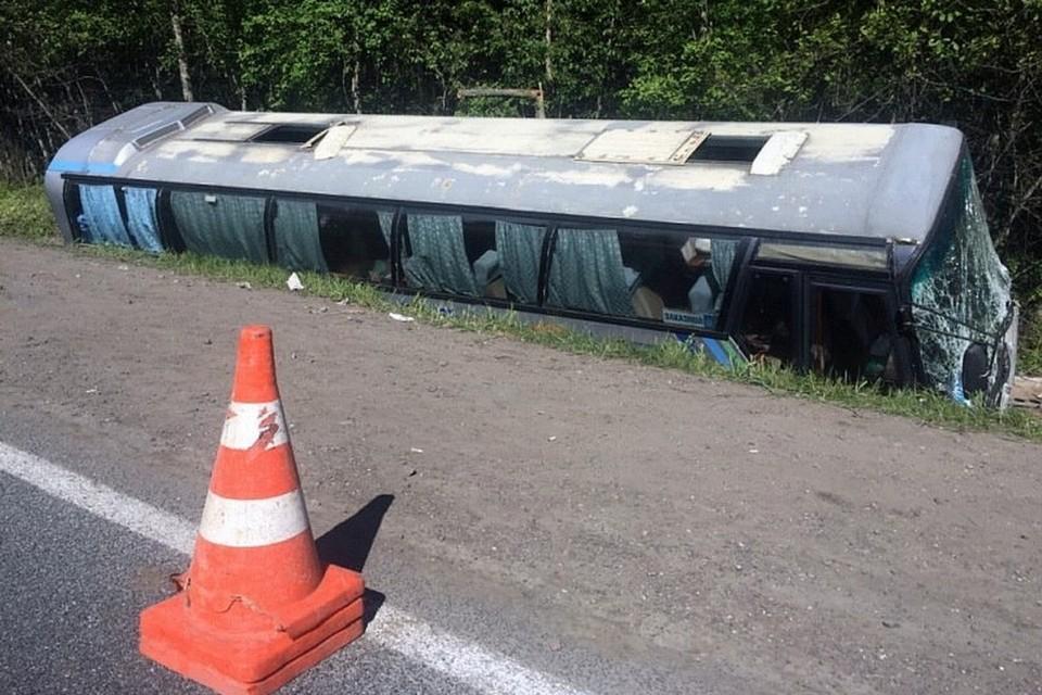 ДТП с участием экскурсионного автобуса произошло в Псковской области 22 мая 2018 года - водитель потерял сознание, пострадали 22 школьника. Фото: пресс-служба УМВД России по региону.