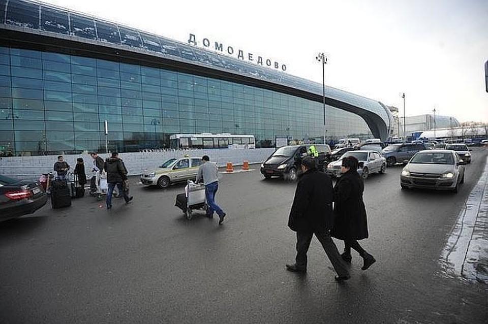 В Домодедово из-за сообщения о минировании задержали рейс Москва - Токио