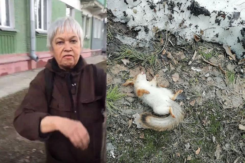 Живодерка, убившая бельчонка, не считает себя ни в чем виноватой. Фото: https://vk.com/akadem54