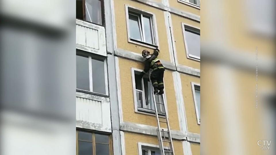 Спасатели освободили ласточку, которая запуталась в окне. ФОТО: Ctv.by