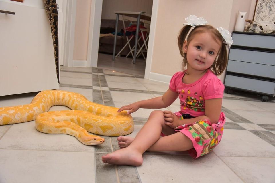 Маленькая девочка больших змей не боится.
