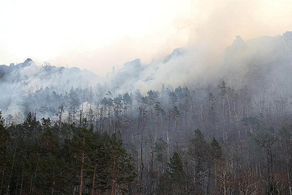 Лесные пожары в Иркутской области: горит 217 тысяч гектаров тайги