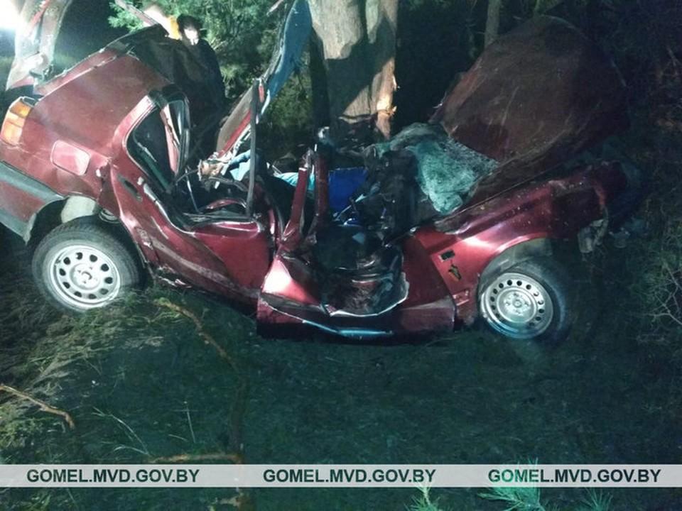 В Мозырском районе пьяный водитель врезался в дерево и погиб.