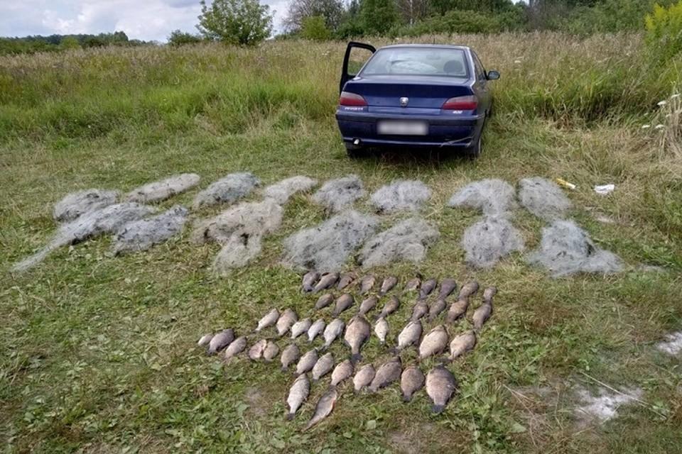 В брошенной машине браконьера лежали паспорт и документы на аренду водоема. Фото: gosinspekciya.gov.by.