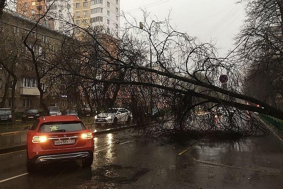 На столичный регион надвигается шторм